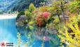 实拍九寨沟震后首个秋天 还是记忆中的童话世界!