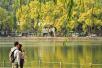 冷空气今天开始影响杭州,明后天最高气温将跌破20℃