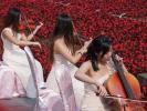 美女在广州百万葵园的海棠花田里演奏