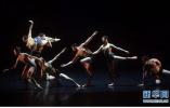 """中国芭蕾领军人物共商未来 十大院团展示""""中国芭蕾力量"""""""