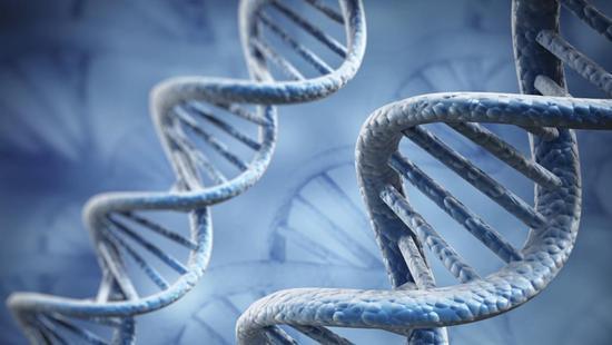 美国将首次对人体进行CRISPR实验,有望对抗癌症