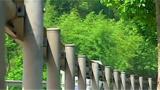 习近平总书记关心农村公路发展纪实