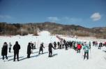 春季期间吉林省旅游总收入119.4亿元 同比增长超23%