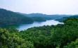 """东莞提出三年内要建25个湿地公园,彰显""""城市就在山水间"""""""