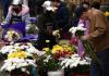 青岛:清明鲜花祭故人