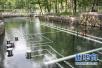 平顶山市开展集中式饮用水水源地保护专项排查