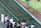 3儿童景观池触电死亡