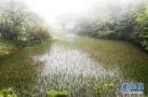 保护长江的生态屏障