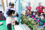 【组图】我们都爱大熊猫