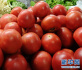 抗癌蔬果:西红柿 生吃还是熟吃好?