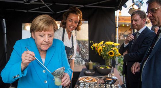 德国总理默克尔出席活动 品尝黄瓜汤津津有味