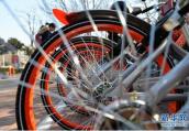郑州市近期公布共享单车行业规范文件 单车超过50万辆