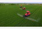 农业农村部:一季度农产品总体合格率为97.6%