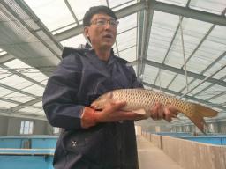 科技特派员王永利:这辈子只干养鱼一件事