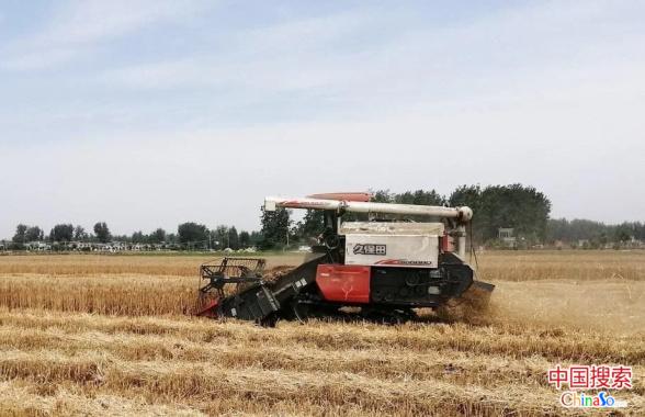 河南固始:农机合作社显身手 农户麦收乐悠悠