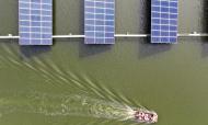 """山东滨州:""""渔光一体""""提升水产养殖效益"""