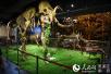 480万年前猛犸象化石入驻中国(哈尔滨)森林博物馆