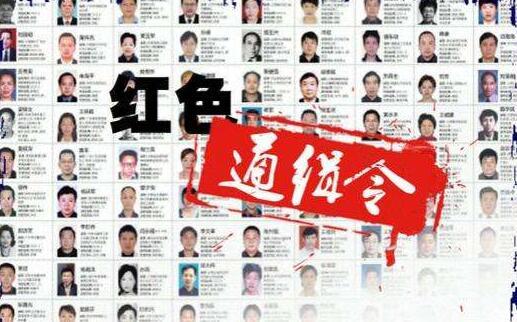 """袁梅/核心提示:袁梅是""""百名红通人员""""中到案的第41名外逃人员。在..."""