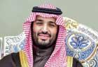 """沙特王室""""宫心计"""""""