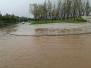 疾风暴雨袭击港城 秦皇岛多处汪水树倒交通受阻