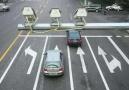 """锦州""""开车不系安全带""""严查首日 50起违法行为被抓拍"""