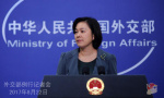 朝鲜向叙利亚化武机构运送货物被截获? 外交部回应