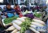 低温影响市场供应 济南蔬菜价格上涨明显