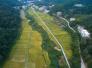 福建省委书记于伟国:发展特色现代农业,加快乡村振兴步伐