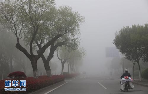 时时彩app哪个好:大雾黄色预警!滨州等7市现能见度低于500米浓雾