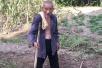 106岁的温州老人种番薯成网红,还是抗战老兵!