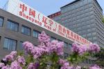"""自贸区沈阳片区出台""""1+3""""产业政策 重点发展70项产业"""