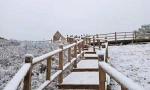 北京下雪了!