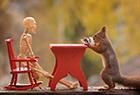 可爱的松鼠过万圣节