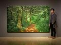 以假乱真的韩国艺术画作