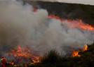 两国森林大火持续