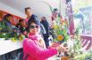 郑州人民公园金秋菊展开幕 预计盛花期公布