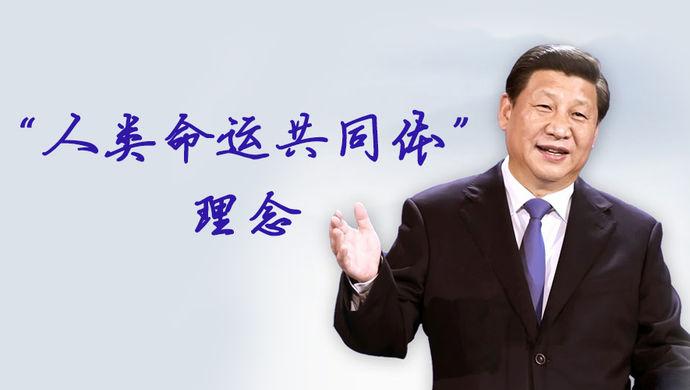 中国特色外交 构建人类命运共同体