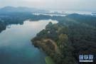 杭州西湖秋意盎然