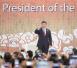 习近平在越南岘港会见俄罗斯总统普京