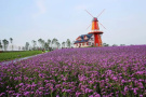 黑龙江又添8处国家级4A景区 其中4家在冰城