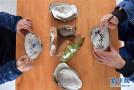 蚌壳小世界的大精彩