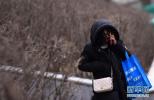 寒潮预警连发5天 今明两天西南华南等降温超10℃