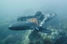 水下飞机解决海底出行
