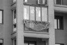 杭州有户人家窗外挂了张网!猜猜看,做啥用的?