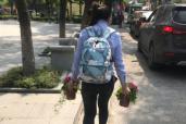 """杭州倡导""""无烟陵园""""第二年:鲜花取代香烛纸钱,文明扫墓渐成趋势"""