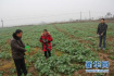 山东涉农县将建农村土地承包仲裁委 配备必要办公设施