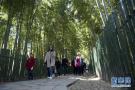 苏州:旅游兴农新样本