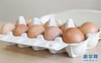 哈尔滨市肉蛋价小幅下降 产能增加、消费疲软是主因