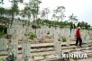 2019年底山东每县市区至少建一处城市公益性公墓