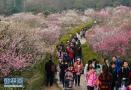南京年轻人旅游热情度全国第五